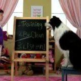 classroom-plumber-applewood-denver