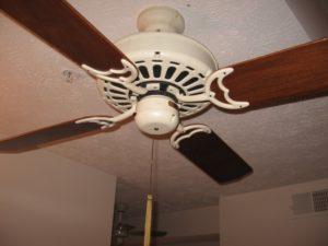 ceiling-fan-applewood-plumbing