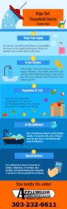 household-germs-infographic