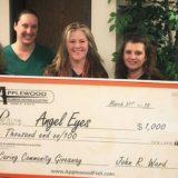 angel-eyes-applewood-giveaway